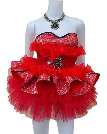 A Great drum major dress in Red several colors available